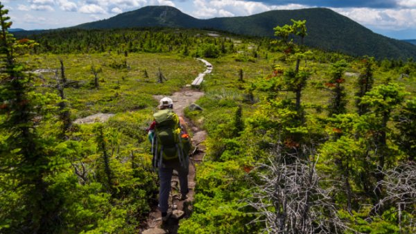 Image of a hiker on a trail, walking toward mountains
